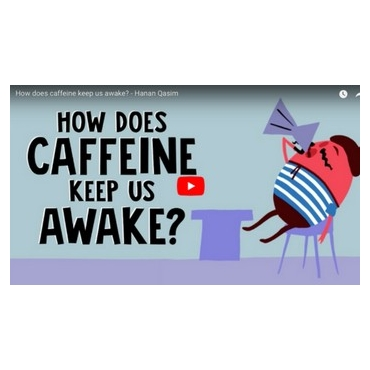 How does caffeine keep us awake? - Hanan Qasim