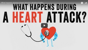 What happens during a heart attack? - Krishna Sudh