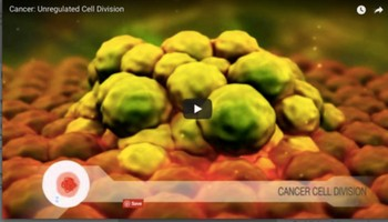 Cancer: Unregulated Cell Division